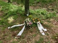 friedwald,ruheforst,urnenbeisetzung