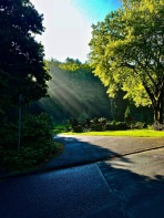 Friedhof, Trauerfeier, Sonnenstrahl, Ansprache, Rede